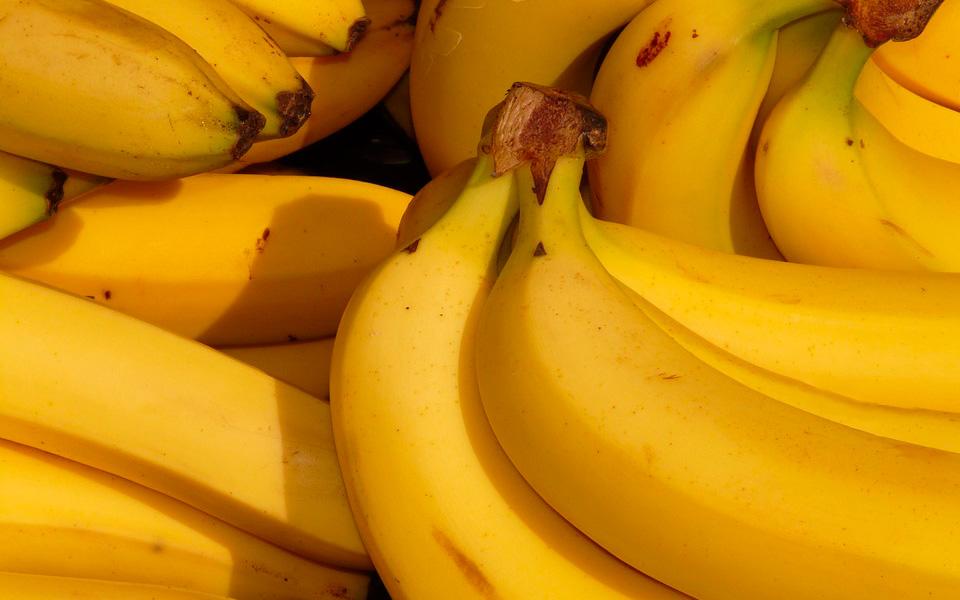 Consejos para el transporte marítimo de plátanos de Canarias